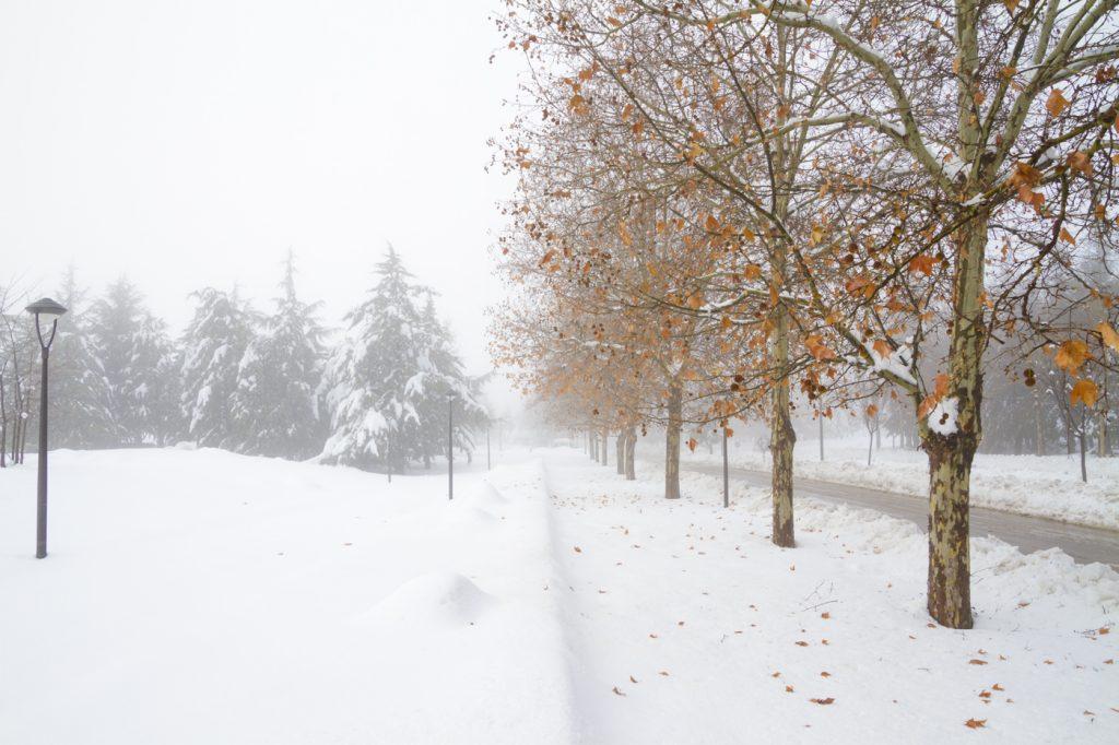 Ifrane dans la neige