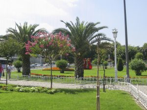 Jardins mosquée bleue