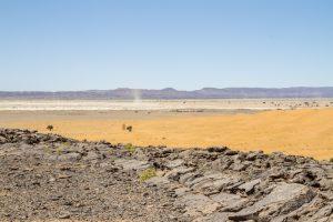 Entre pierres et dunes