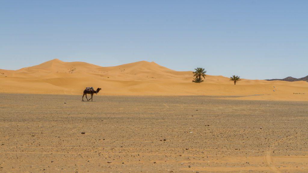 Paysage du désert de Merzouga