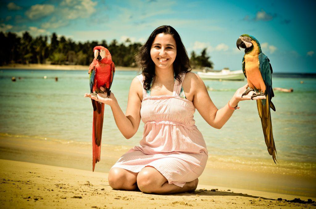 A la plage avec les perroquets