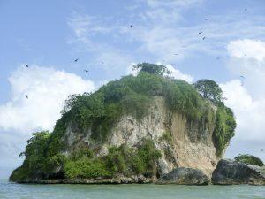 L'île aux oiseaux aux Haitises