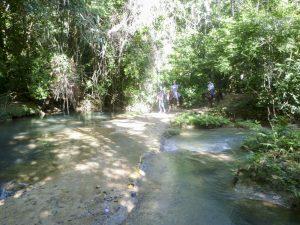 Randonnée en Cheval