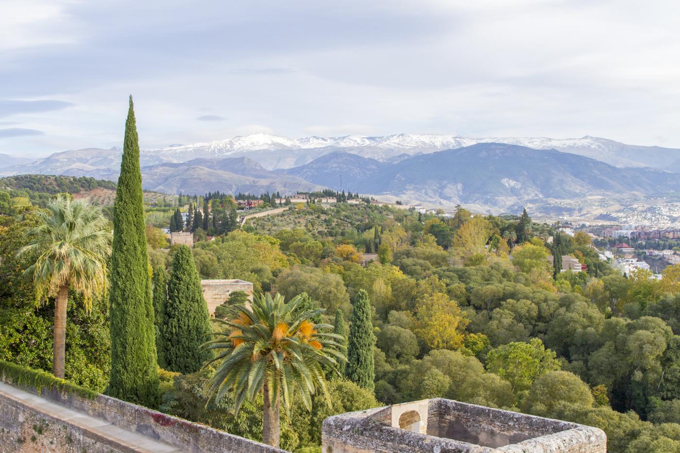 Jardins de l'Alhambra et vue sur la Sierra Nevada depuis l'Alcazaba